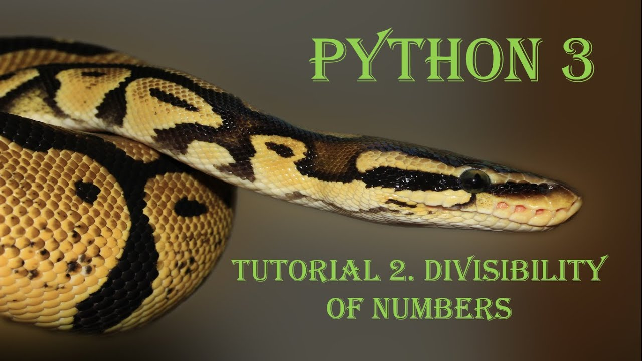 Basics of Python - Divisibility of numbers