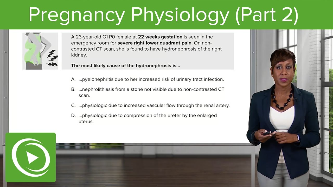 Pregnancy Physiology: Gastrointestinal & Renal System  – Obstetrics Course | Lecturio