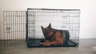 Металлическая клетка для собак Ferplast Dog Inn