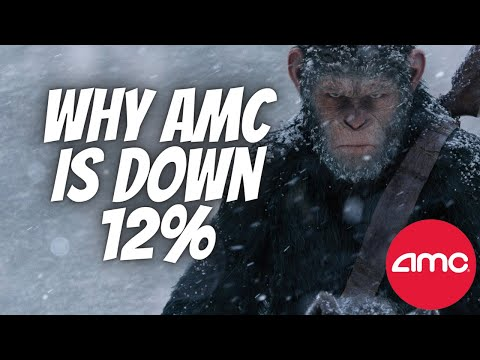 AMC STOCK    We Were Right... When Will HF get Margin Called?