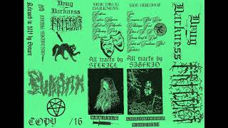 Drug Darkness / Friedhof (2019) (Raw Black Metal, Dark Ambient)
