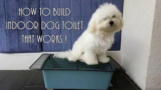 Indoor dog toilet that works
