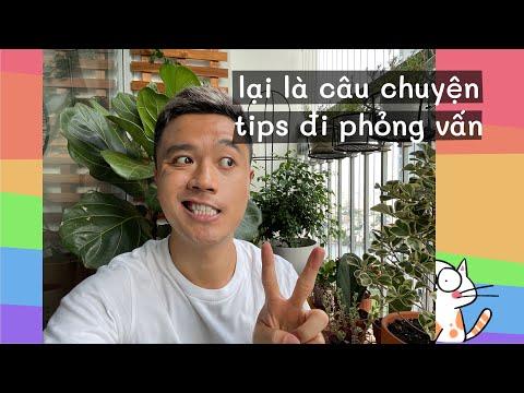 REACTION NHẸ 01 CHIẾC VIDEO HƯỚNG DẪN PHỎNG VẤN TRÊN TIKTOK!