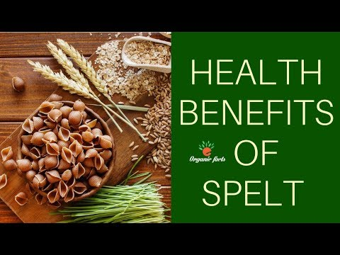 AMAZING HEALTH BENEFITS OF SPELT | NUTRITIONAL FACTS ABOUT SPELT