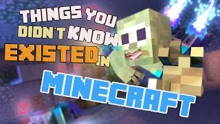 THINGS YOU DIDNT KNOW EXISTED IN MINECRAFT - (Animation Collab)