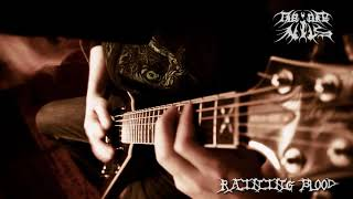 Slayer - Raining Blood Instrumental Cover - THEoneNILS