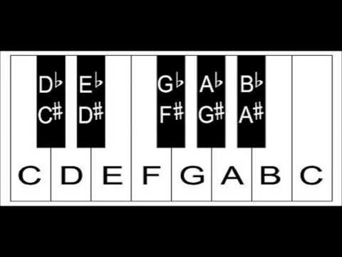 Piano Keyboard Layout -  How To Label The Keys On A Keyboard Or Piano