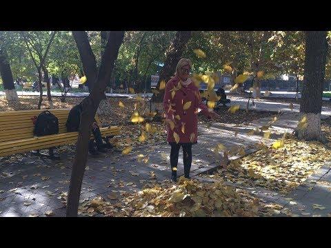 Yerevan, 16.11.17, Th, Kom Aygiits Prospekt.