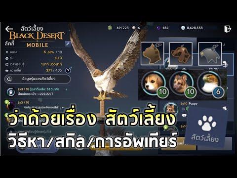 "Black Desert Mobile | EP4 ว่าด้วยเรื่องของ ""สัตว์เลี้ยง""  ทำอะไรได้/วิธีหา/สกิล/การอัพเทียร์"
