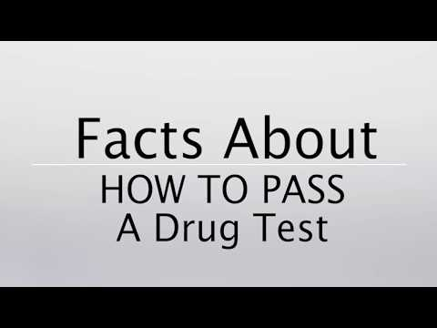 How To Pass A Drug Test Every Time (2018)