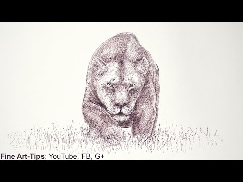 How to Draw Draw a Lioness With a Marker - Mountain Lion - Cougar - Jaguar - Big Cat - Puma