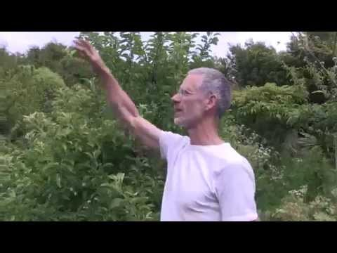 Riverton Food Forest Tour with Robert & Robyn Guyton