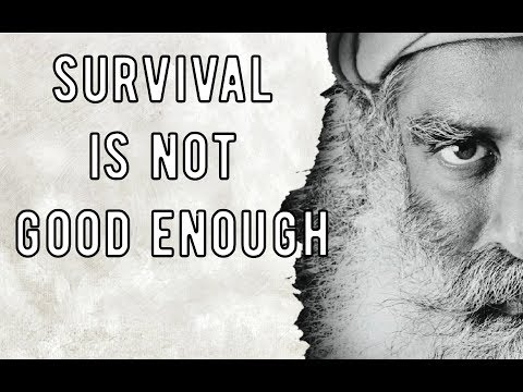 Sadhguru - 28 to 30 hours of focus time is enough to transform you, you deserve that