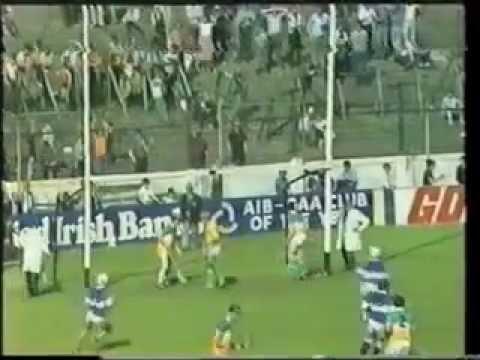 1981 Leinster SHC - Laois v Offaly