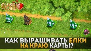 Как выращивать елки (препятствия) на краю карты? | Clash of Clans
