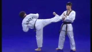 Master Park - Coups de pied de base du Taekwondo