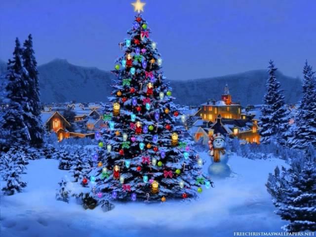 antti-tuisku-joulun-rauhaa-15danyyy