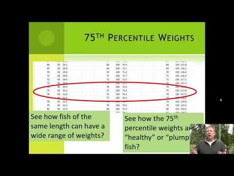 FM Lecture 11 - Fish Condition