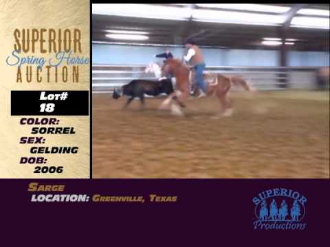 2015 Superior Spring Horse Auction Preview!
