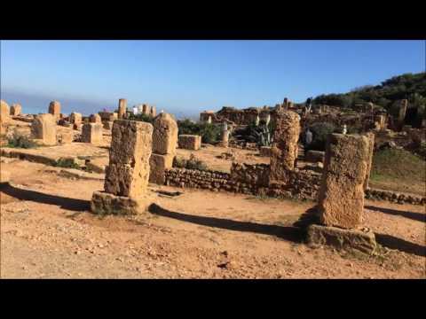 رحلة الجزائر 2016