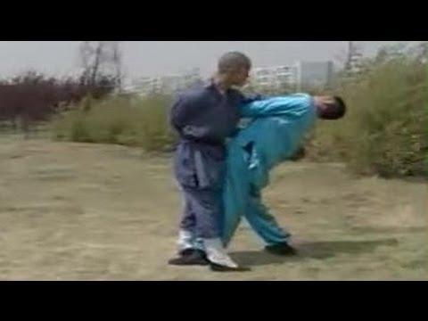 Shaolin kung fu 36 combat methods
