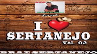 #BRAZ ##I LOVE SERTANEJO## VOL 02
