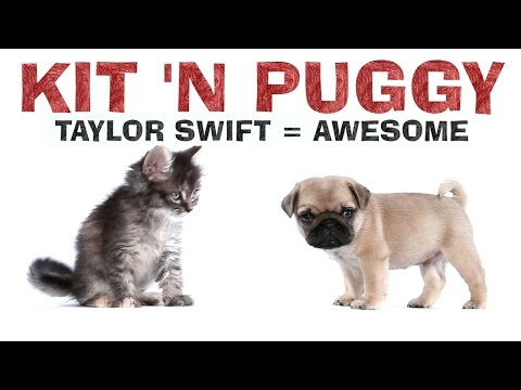Taylor Swift - 1989 - Kit 'N Puggy