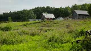 Morril Farm Dairy, LLC