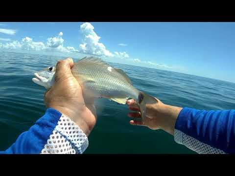 Grunt City Tampa Offshore Fishing (reupload)