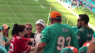 NFL Fan Fights