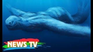 Bí ẩn chưa được giải đáp về quái vật biển khổng lồ hình người tại Nam Cực