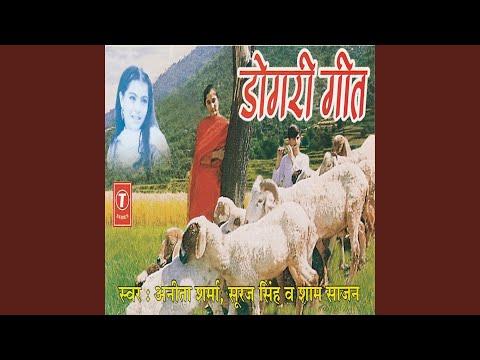 Sun Jammua Di Gall