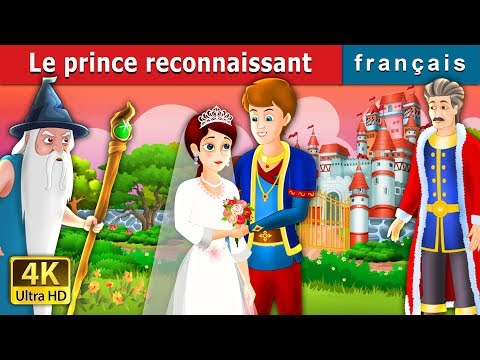 Le prince reconnaissant   Histoire Pour S'endormir   Contes De Fées Français