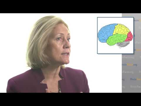 The Workings of the Adolescent Brain