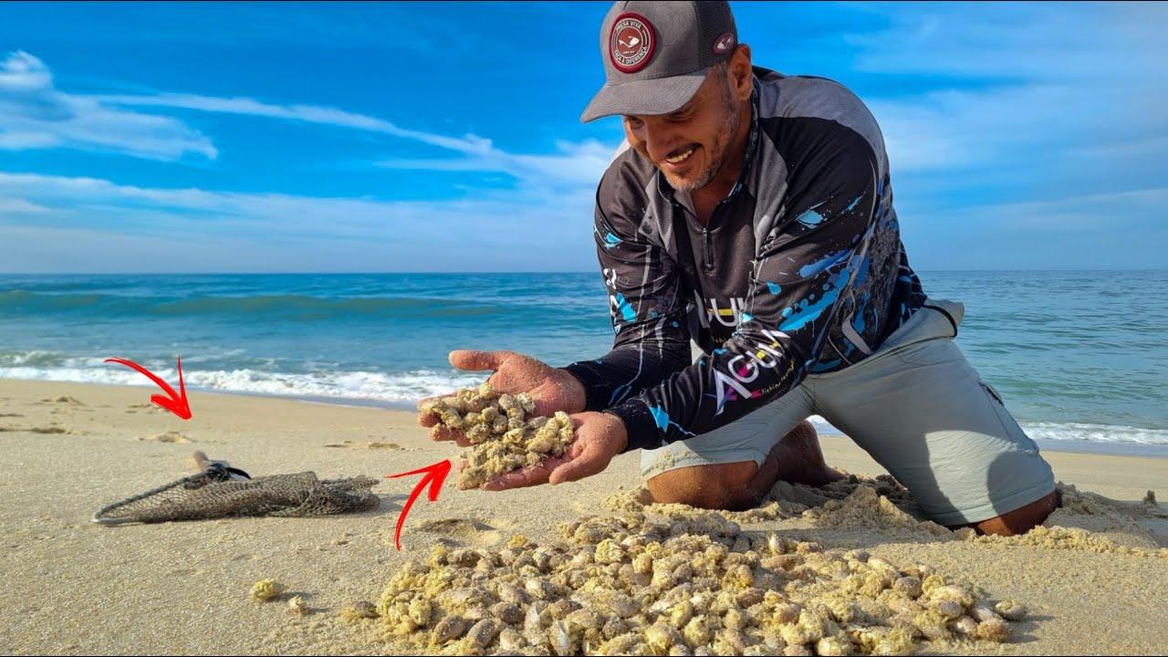 VOCÊ JÁ PESCOU COM TATUÍ NA PRAIA??? OLHA O TAMANHO DO PEIXE QUE FIGUEI NA PESCARIA. Pesca de Praia!