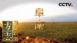 《中国影像方志》 第271集 安徽阜南篇| CCTV科教