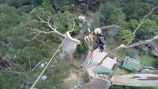 40 metre removal