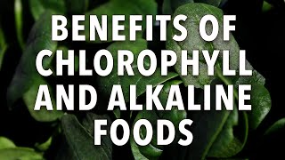 Benefits of Chlorophyll and Al…