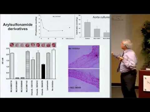 Pathophysiology & Treatment of Medial Vascular Calcification