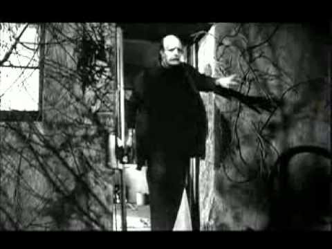 El jovencito Frankenstein tráiler en castellano