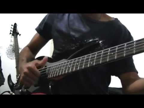 Ibanez SR305 5 String Bass with Warwick strings test