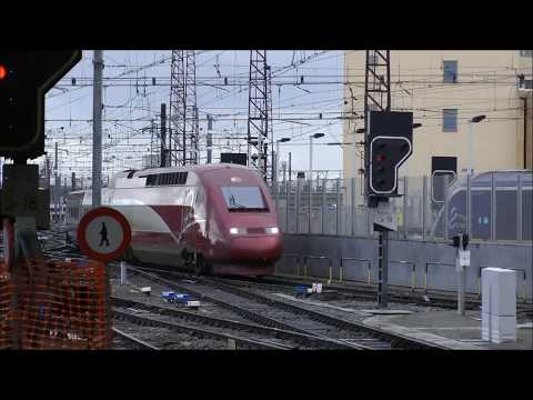 Trains At Brussels Midi Station 28/09/2019