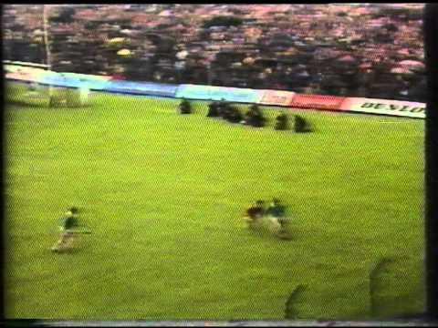 All Ireland Hurling Final 1973 (2 of 8)