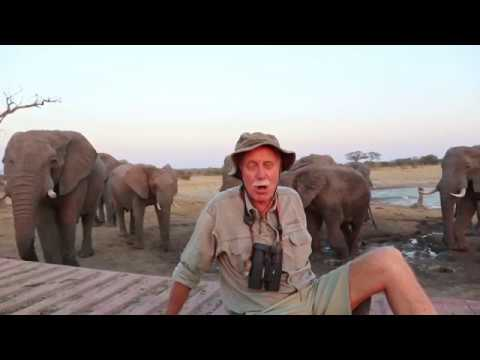 Join us in Zimbabwe - A Message From Mark Butcher | Water for Hwange Safari