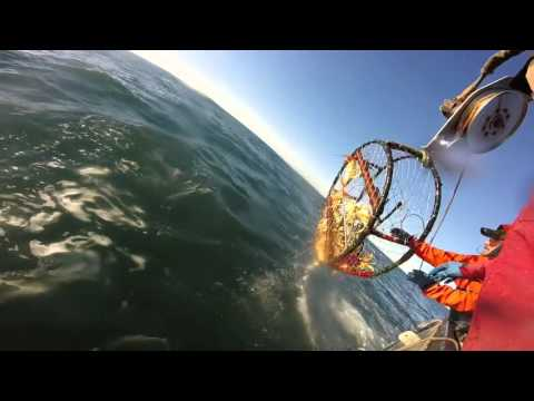 Commercial Crab Fishing West Coast