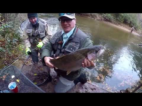 Delayed Harvest Trout Fishing from YouTube · Duration:  4 minutes 20 seconds