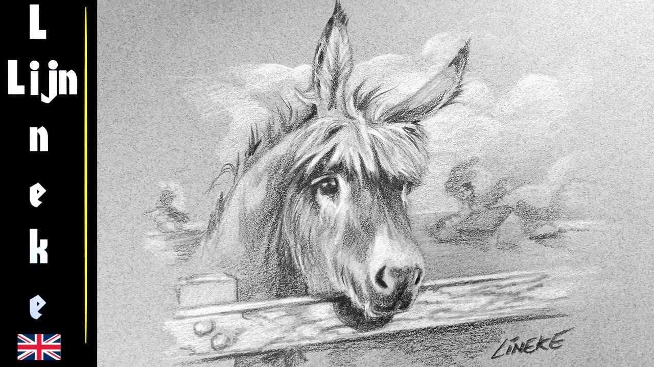 Easy donkey for beginners pencil drawing