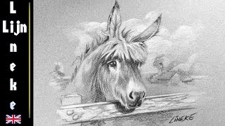 Drawing a DONKEY with black and white color Pencil easy tutorial