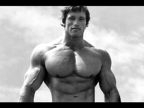 How To Train For Mass | Arnold Schwarzenegger's Blueprint ...