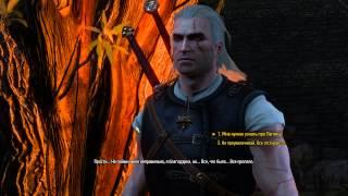 Ведьмак 3: Дикая Охота - 26 √ СПИСОК БЛУДНИЦ